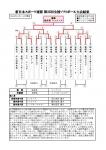 2014年度新日本スポーツ連盟第30回全国スポーツ祭典 第25回全国ソフトボール大会